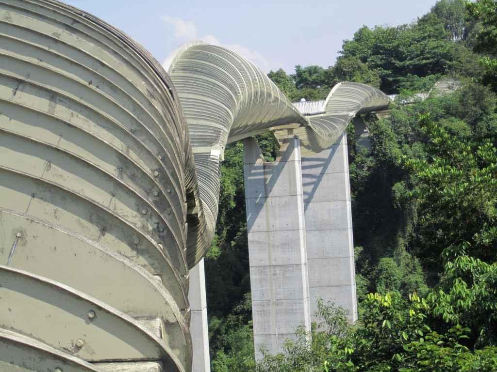 The Henderson Waves Bridge in Singapore