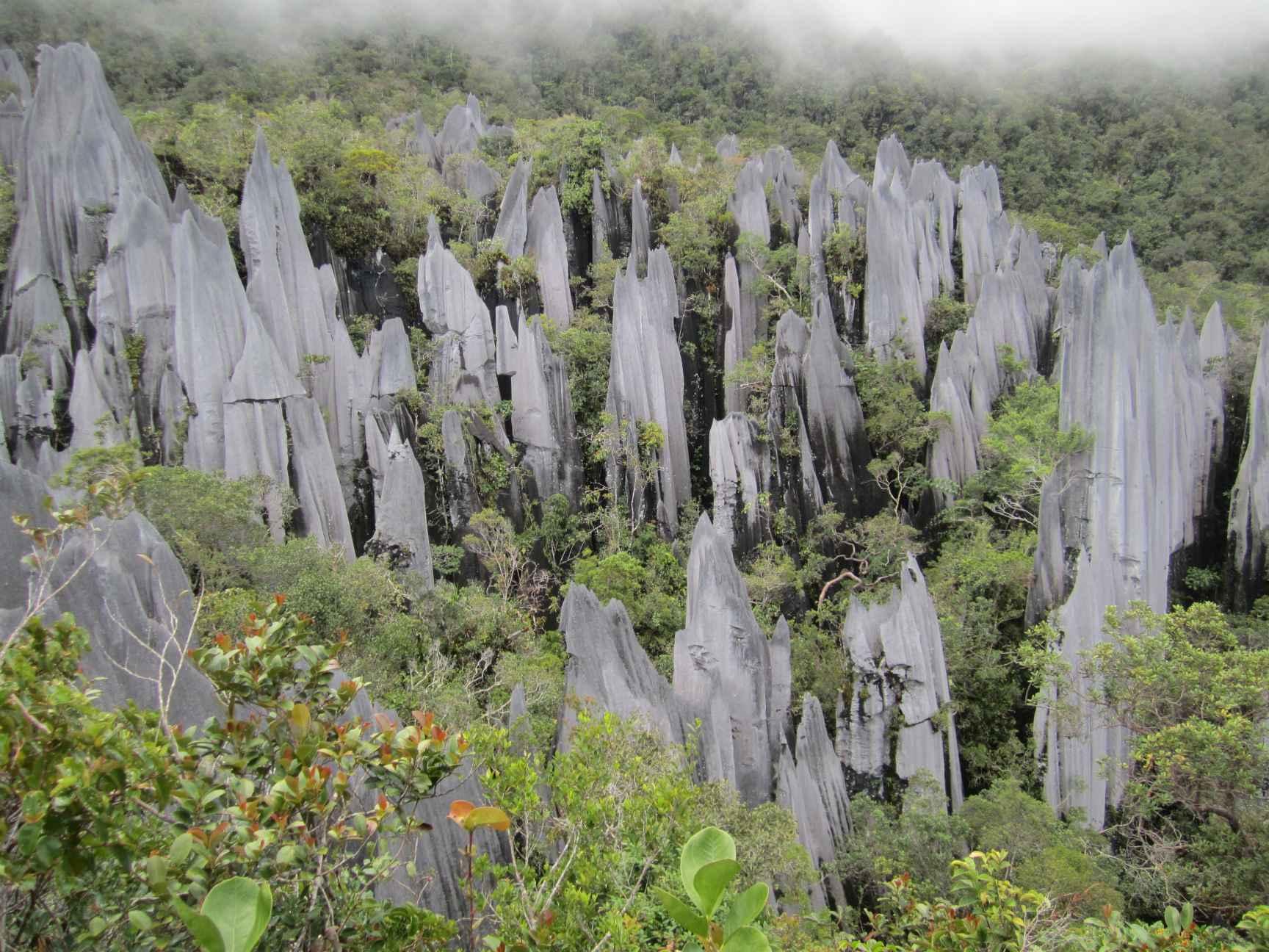 sarawak chamber malaysia
