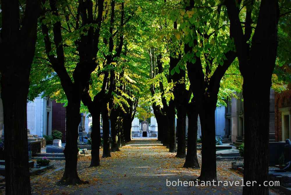 Milan monumental cemetery (7)