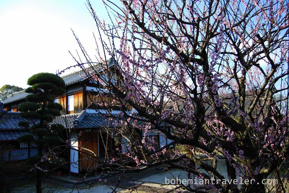 Hosokawa Gyobutei residence (7)