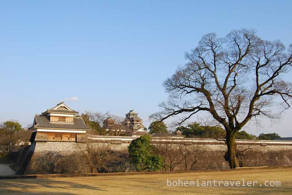 trees and Kumamoto Castle (2)