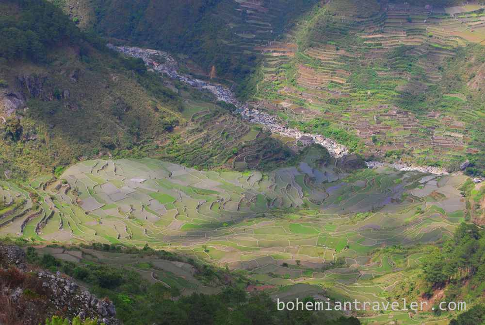 view of rice terraces near Sagada (4)