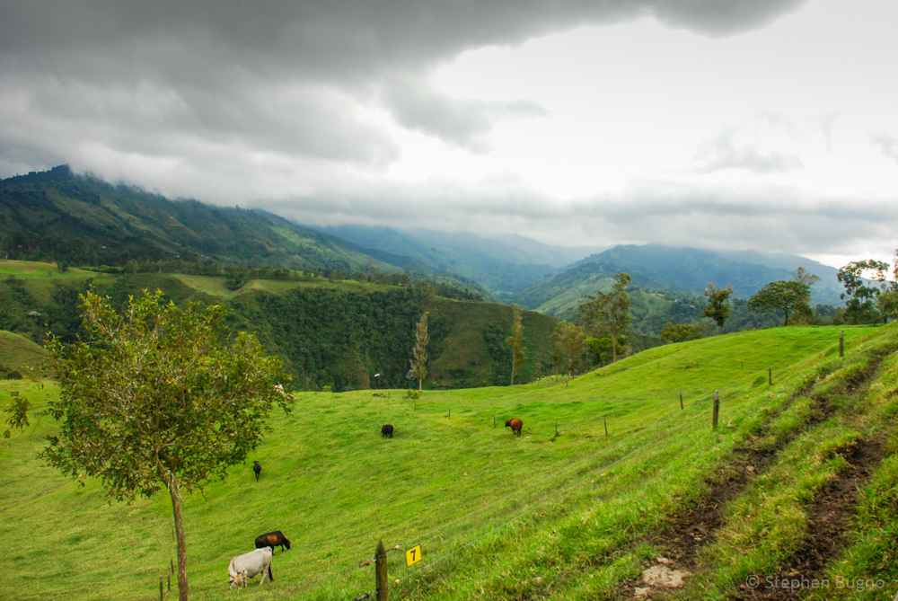 Colombia small group Tour