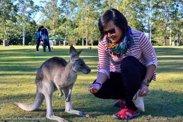 why im going to australia