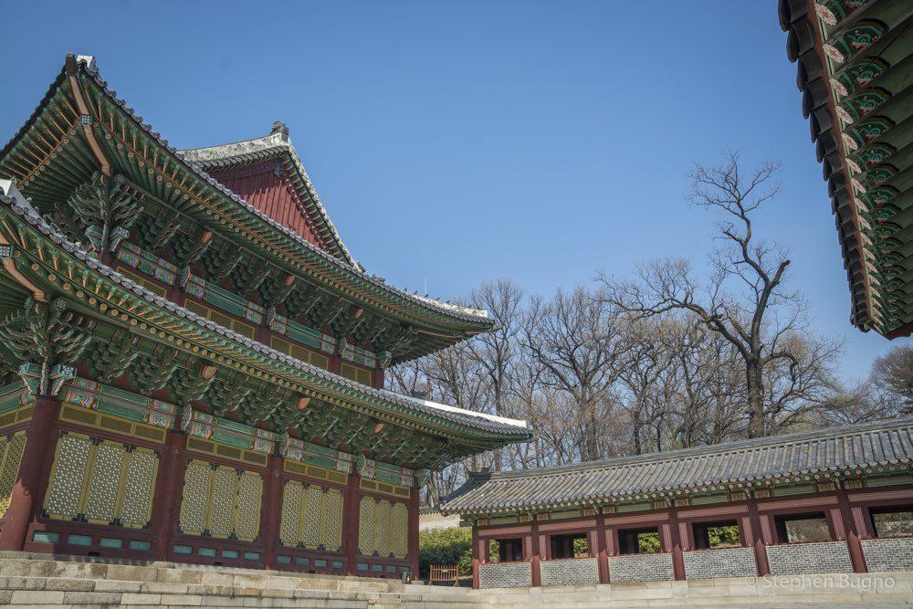 experience korea tour