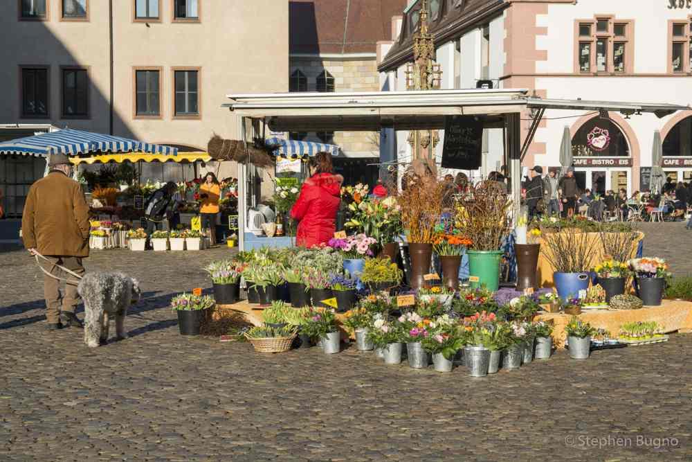 Freiburg-7995