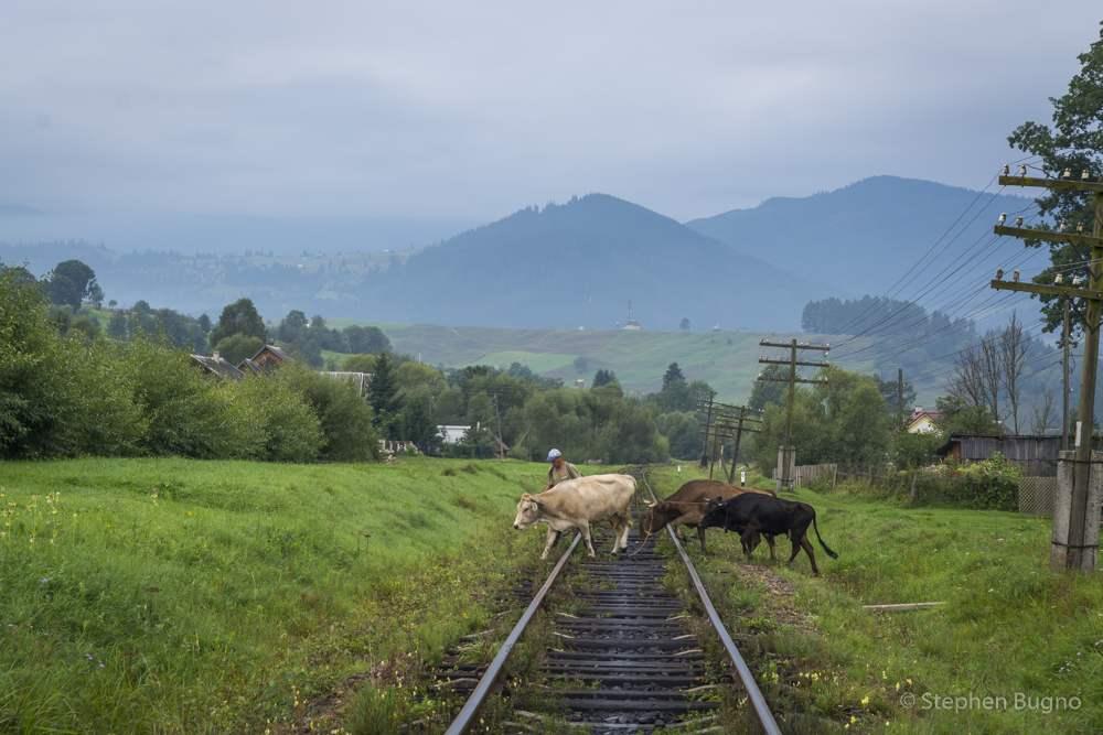 Carpathians of Ukraine