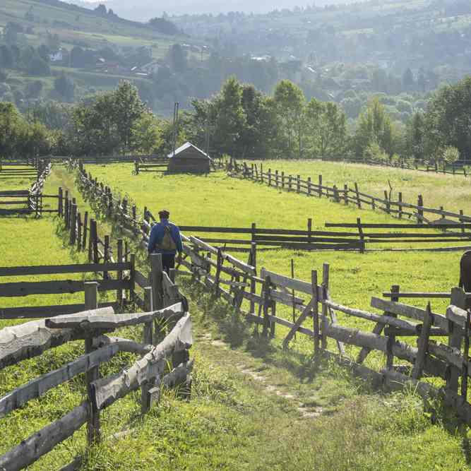 Carpathians of Ukraine